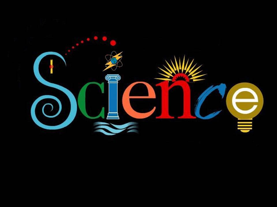 The Science in Arlington Science Focus School